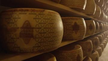 Formaggi senza lattosio, alternative al latte come il Grana Padano DOP, formaggio naturalmente privo di lattosio e senza glutine, adatto agli intolleranti grazie alla lavorazione, stagionatura e al naturale processo di produzione